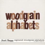 sclingerman-captured-woodgrainalphabets-preview